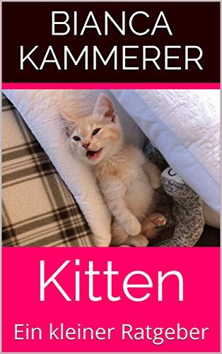 Bild von E Book Kitten Ratgeber